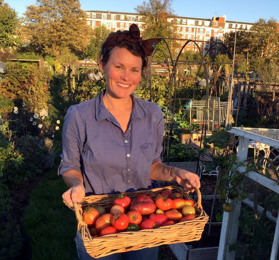 Allotments: Reencounter with the essential